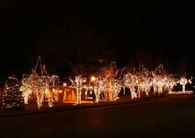 Holiday Lawn Light Decoration-Trees