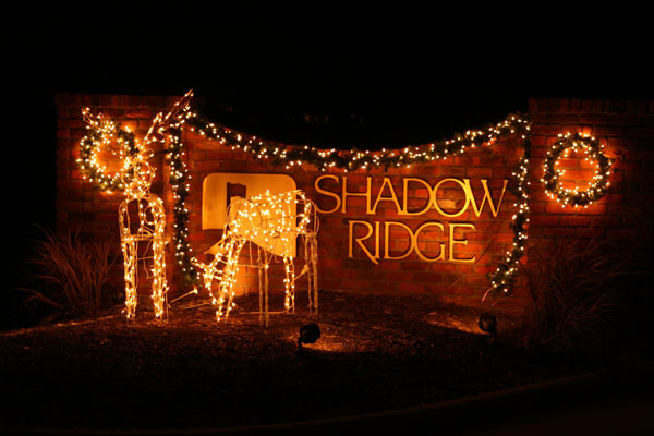 Subdivision Christmas Decor
